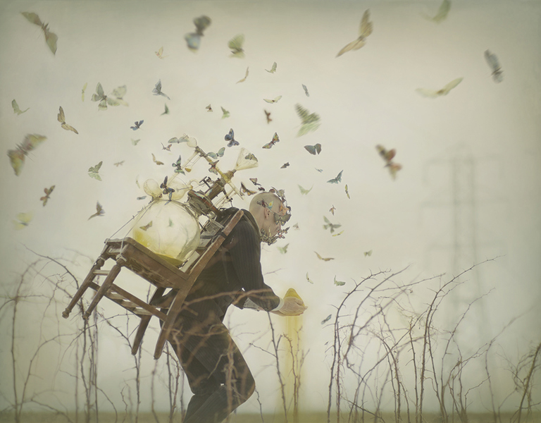 Robert e Shana Parke Harrisson